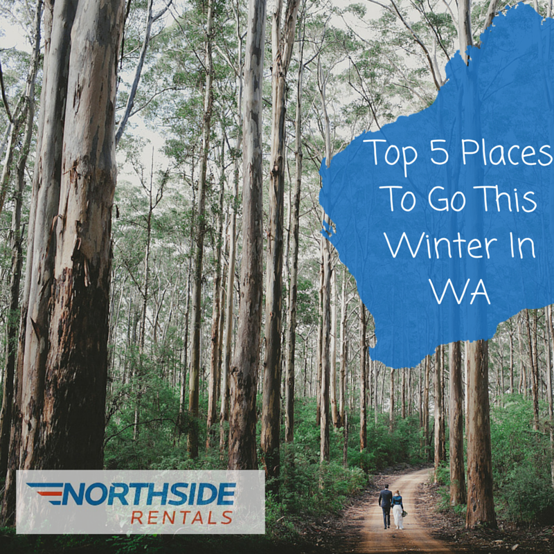 I Need A Place To Rent: Top Five Places To Go This Winter In WA