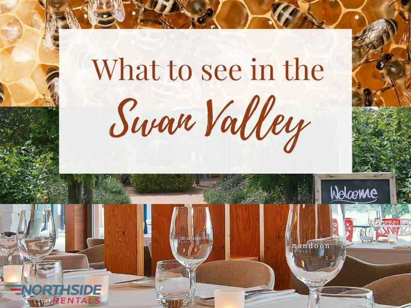 What to see in the Swan Valley